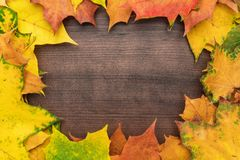 Yellow leaves background. Colorful autumn leaves on brown table. fall season concept background. frame with copy space in the centre stock photo