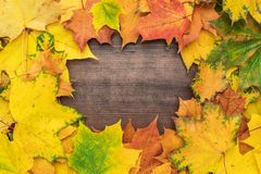 Yellow leaves background. Colorful autumn leaves on brown table. fall season concept background. frame with copy space in the centre royalty free stock images