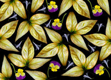 Yellow leaves and flowers background Royalty Free Stock Photo