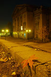 Yellow leaves on the granite steps of City. Autumn leaf lies on a city sidewalk night royalty free stock images