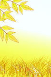 Yellow Leaves and Grass. Page with Yellow Leaves and grass with white space for text stock illustration