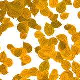 Yellow leaves over white background Royalty Free Stock Photo