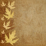 Yellow leaves on parchment Royalty Free Stock Photography