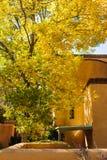 Yellow leaves on tree on Canyon Road, Santa Fe, New Mexico. royalty free stock photography
