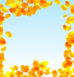 Yellow leaves vector fall background. With day sky vector illustration