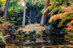 Yellow leaves waterfall garden in autumn Stock Image