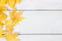 Yellow leaves of a wooden surface Royalty Free Stock Photography