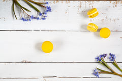 Yellow lemmon macaroons and flowers blue snowdrops on light wooden background Stock Image