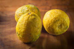 Yellow lemon or citrus Stock Image