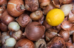 Yellow lemon and fresh onions Stock Images