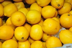 Yellow lemon fruit Royalty Free Stock Photo