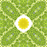 Yellow lemon and grass patterns background Royalty Free Stock Photo