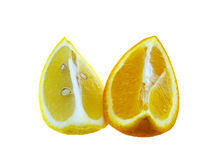 Yellow a lemon and orange segment Royalty Free Stock Image