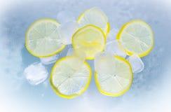 Yellow, Lemon, Produce, Citric Acid stock images