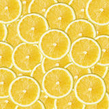 Yellow lemon slices Stock Images