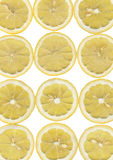 Yellow lemon slices Stock Photography