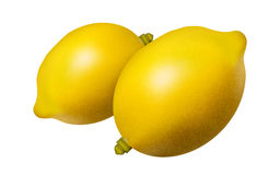 Yellow Lemons. Eps 10 available Stock Images
