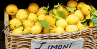 Yellow lemons in basket on market Royalty Free Stock Photos