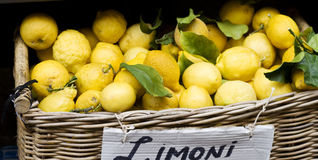 Yellow lemons in basket on market Royalty Free Stock Photo