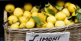 Yellow lemons in basket on market Royalty Free Stock Photo