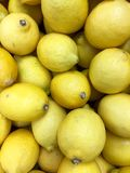 Yellow Lemons Stock Photography