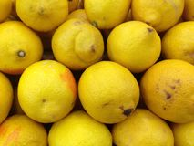 Yellow lemons Royalty Free Stock Image