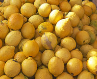 Yellow lemons from Sicily Royalty Free Stock Photography