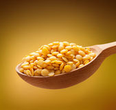 Yellow lentil in a wooden spoon Stock Photography
