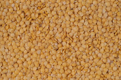 Yellow-lentils. Close up of yellow-lentils Stock Photography