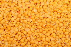 Yellow lentils background Stock Images