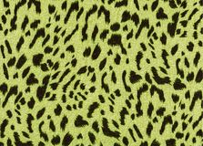 Yellow leopard fabric pattern texture. Trend fashion fabric texture. Leopard animal print backdrop for art work royalty free stock images