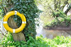 Yellow lifebuoy. Ring by the river Royalty Free Stock Photos