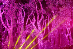 Yellow lights with red background. Lights lines on the stage with trees background royalty free stock photography