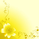 Yellow lili Royalty Free Stock Photography