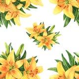 Yellow lilies seamless pattern. Yellow lilies seamless watercolor pattern Stock Photography