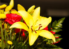 Yellow Lilly in Boquet Royalty Free Stock Photo
