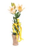Yellow lily flowers in wooden vase isolated on white Royalty Free Stock Images