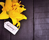 Yellow lily and a paper tag. With a good morning inscription Stock Image