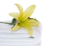 Yellow Lily on White Towel Stock Image