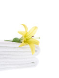 Yellow Lily on White Towel Stock Photo