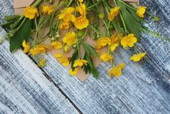 Yellow Little Flowers in Envelope Rustic Wooden Background Flat Lay. Yellow Little Flowers in Envelope Rustic Wooden Background Royalty Free Stock Images