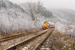 Yellow Locomotive in Winter Landscape. Winter landscape with yellow locomotive and red passengers cars passing frozen trees stock image