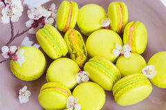 Yellow macaroons with colorful cream on plate Stock Images