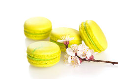 Yellow macaroons isolated on white, selective focus. Spring yellow macaroons isolated on white, selective focus Royalty Free Stock Photo