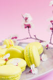 Yellow macaroons on plate, selective focus Stock Photography