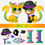 Yellow magic cat with accessories and toys Stock Images
