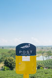 Yellow mailbox in tea field with sky Royalty Free Stock Image