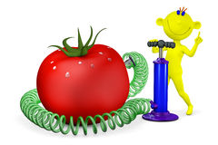 Yellow man pumps a tomato Royalty Free Stock Photography