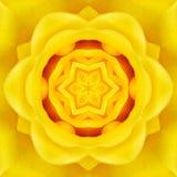 Yellow Mandala Concentric Flower Center Kaleidoscope Royalty Free Stock Image