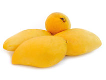 Yellow mango Royalty Free Stock Photo